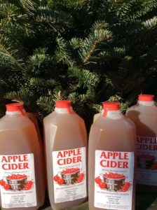 Apple cider at Indian Orchards