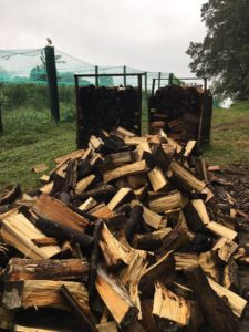 Firewood Media PA Indian Orchards